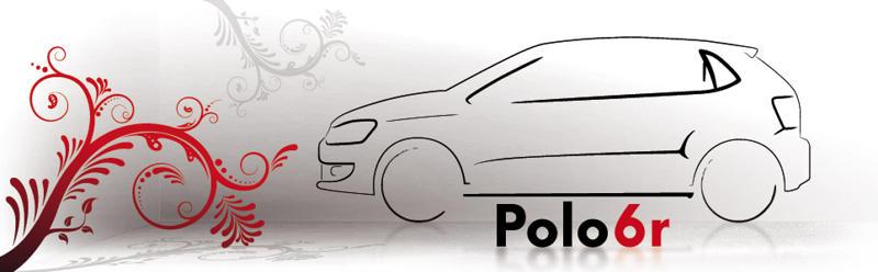 Polo 6R et 6C1